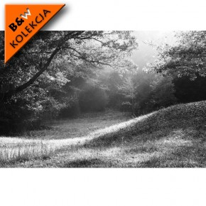Fototapeta polana czarno biała