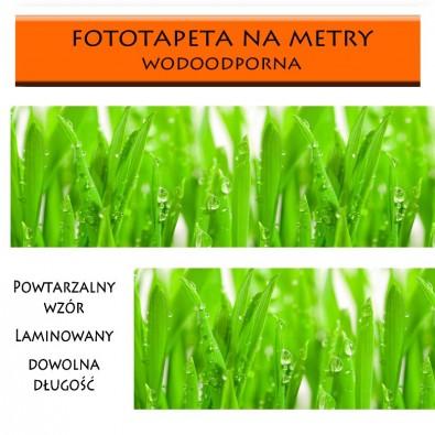 Wodoodporna fototapeta do kuchni z trawą