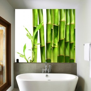 Fototapeta bambus na ścianę