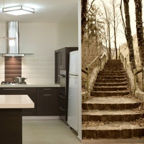 Fototapeta schody w lesie
