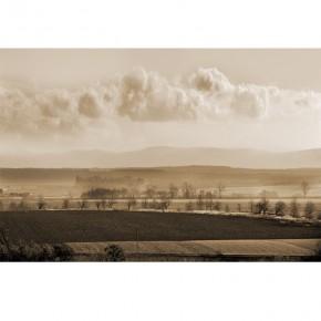 Fototapeta natura pola pod chmurką