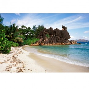 Fototapeta tropikalna plaża skały