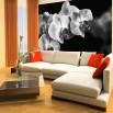 aranżacja salonu z czarno fototapetą w kwiaty