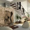 Fototapeta mały słoń | fototapeta dla dzieci