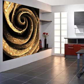 Fototapeta Gold Rose