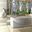 Fototapeta las brzozowy w aranżacji łazienki