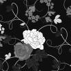 Fototapeta czarna róża czarno biała