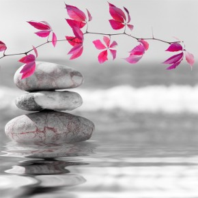 różowe liście i kamienie