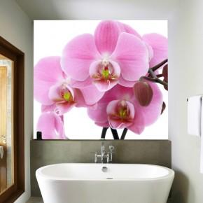 Fototapeta orchidea do łazienki
