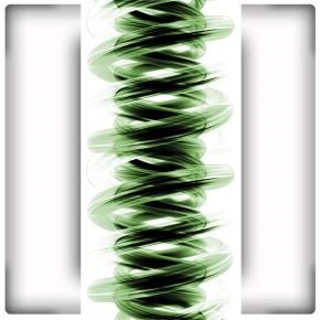 zielona sprężyna
