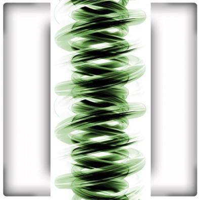 Fototapeta zielona sprężyna