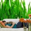 Dekoracja o motywie trawy z rosą - tapeta na ścianę