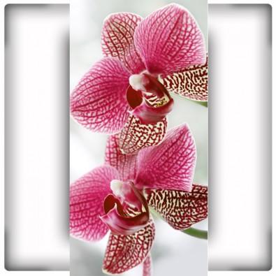 Fototapeta na wąską ścianę z kwiatami orchidei