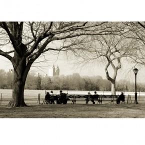 Fototapeta Central Park