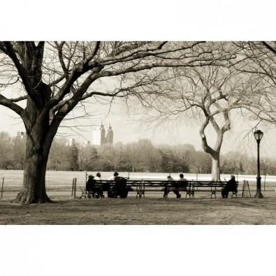 Fototapeta New York - Central Park