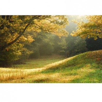 Fototapeta polana jesienią