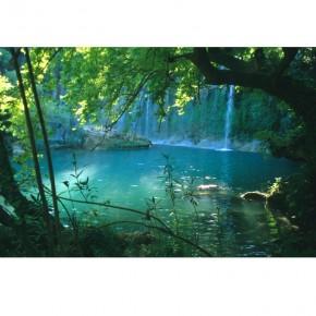 wodospad między drzewami