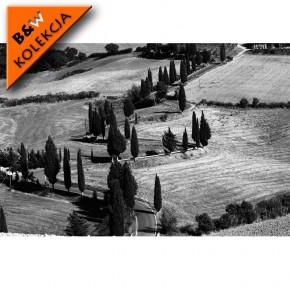 Fototapeta Toskania - czarno biała