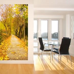 Fototapeta aleja drzew - park jesienią