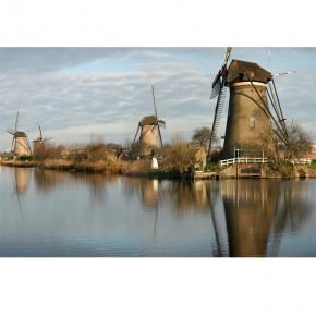 Fototapeta wiatraki Holandia