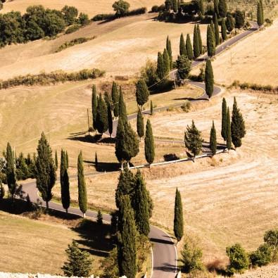 Fototapeta Toskania
