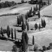 Fototapeta Toskania w kolorze czarno białym