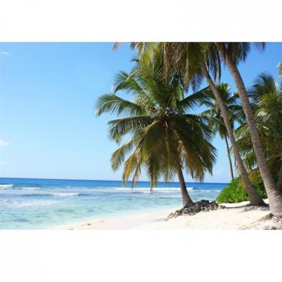 Fototapeta tropikalna plaża