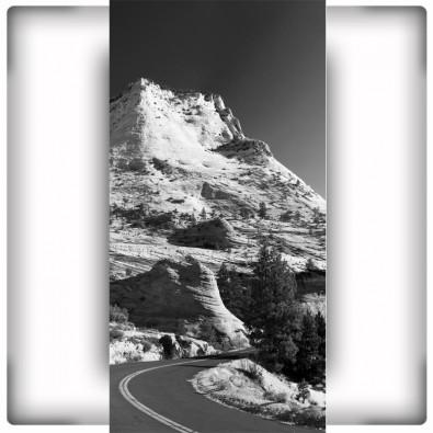 Fototapeta doga w górach | Czarno biała