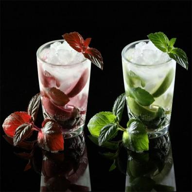 Fototapeta drinki