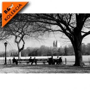 Fototapeta ławka w parku
