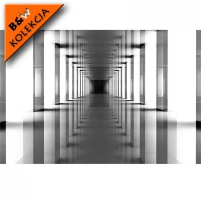 Fototapeta tunel - czarno biała