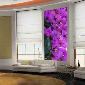 Fototapeta fioletowe dzwoneczki | fototapeta kwiaty