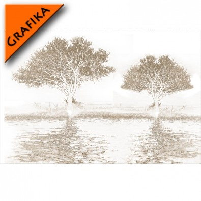 Fototapeta drzewa - grafika