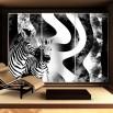 Fototapeta zebra do ozdobienia szafy