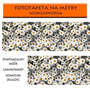Rumianki | fototapeta na metry