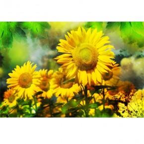 retro słoneczniki