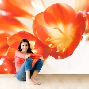Fototapeta pomarańczowe szczęście