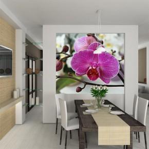 Fototapeta gałązka z kwiatuszkami orchidei