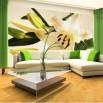 Ażacja salonu - fototapeta romantyczna lilija