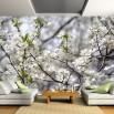Fototapeta z motywem kwiatów jabłoni