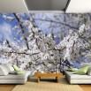 Fototapeta jabłoń na ścianie salonu