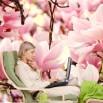 Fototapeta sonata magnolii do pokoju relaksu