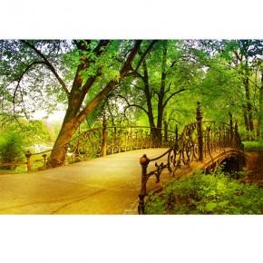 Fototapeta most w parku