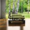 Fototapeta brzozowisko do zielonego salonu