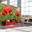 Fototapeta dekoracyjne maki w zbożu - aranżacja salonu