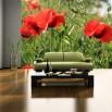 Fototapeta dekoracyjne maki w zbożu za zieloną kanapą w salnie