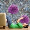 Fototapeta kwiaty czosnku - ozdoba ściany w salonie