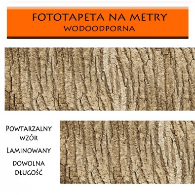 Fototapeta kora drzewa zmywalna do kuchni