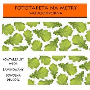 Fototapeta liście do kuchni między meble