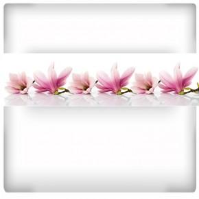 kuchenna magnolie